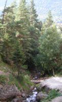 Теберда по дороге к водопаду Шумка
