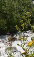 дорога на Чучхурсий водопад